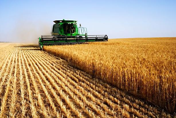 Tarımda 4 milyon çiftçiye İş ve Aş kim bulacak?