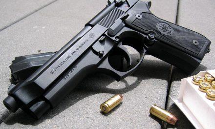 Bireysel silahlanma ile ilgili Başbakan'a yönelik soru önergesi
