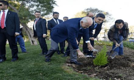 SE Genel Başkanı Papandreu Gezi Parkı'nda-Hürriyet