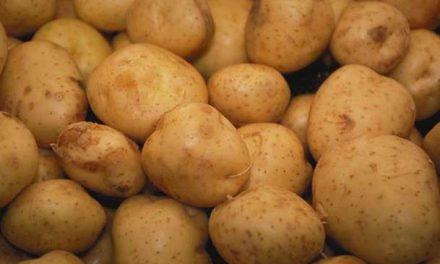 Patates fiyatı Meclis'te