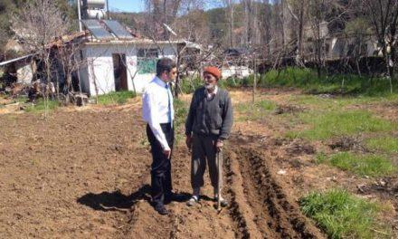 Çileyi Çeken Çiftçi, Sefayı Süren Aracı