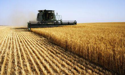 Güçlü tarım için toprak reformu şart – Cumhuriyet