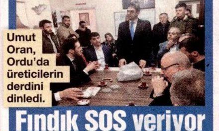 Fındık SOS Veriyor- Sözcü